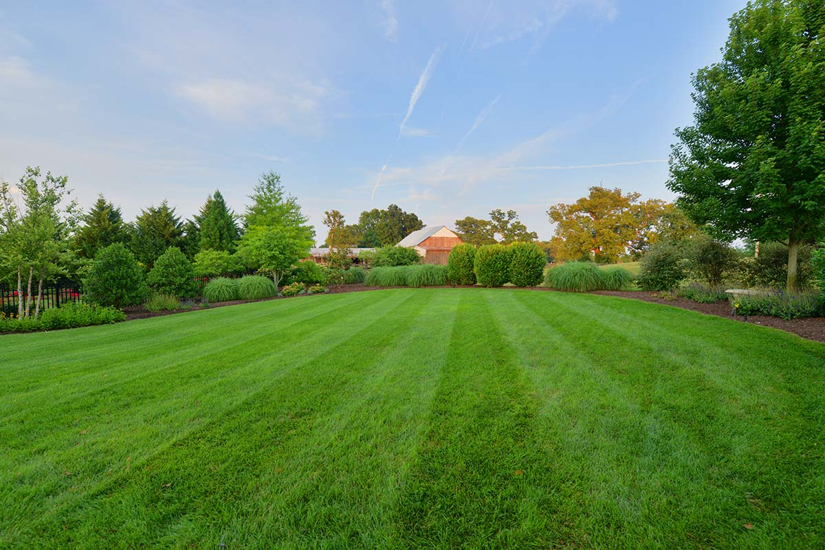 Earthadelic Landscapes Knoxville Tn Landscaping