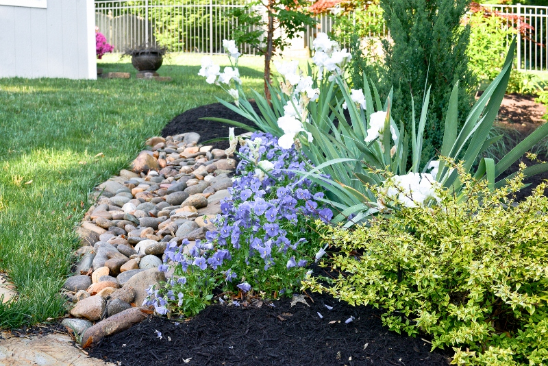 A drainage solution strategically placed with river rocks frame this landscaped bed.